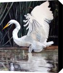 """""""Majestic"""", Paintings, Realism, Animals, Painting, By William Clark"""