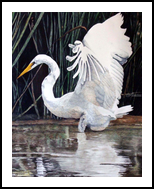 """Majestic"", Paintings, Realism, Animals, Painting, By William Clark"