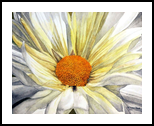 """""""Miss Daisy"""", Paintings, Realism, Botanical, Painting, By William Clark"""