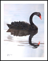 """""""Reflections in Black"""", Paintings, Realism, Animals, Watercolor, By William Clark"""
