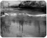 """""""River in Bend"""", Photography, Commercial Design, Landscape, Photography: Stretched Canvas Print, By Michael C C Bertsch"""