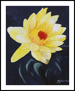 """""""Sun Kissed"""", Paintings, Realism, Botanical, Watercolor, By William Clark"""