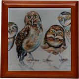 Company of owls, Paintings, Expressionism, Animals, Figurative, Oil, By Liubov Kuptsova