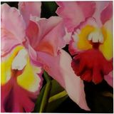 Cattleya, Paintings, Photorealism, Floral, Canvas, Oil, By Anna Rita Rita Angiolelli