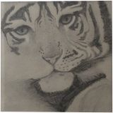 Tiger Cub, Drawings / Sketch, Abstract, Animals, Pencil, By Madisin Mae-Ann Bennett