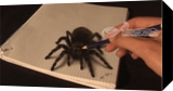 3D drawing of a Spider/ hyperrealistic Art, Graphic, Expressionism, 3-D, Charcoal, By Stefan Pabst