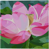 Lotus Flower, Paintings, Impressionism, Floral, Oil, By Angelo