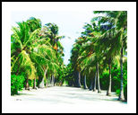 Maldives,white sandy pathway, Paintings, Fine Art, Landscape, Watercolor, By Angelo