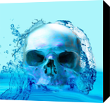 Skull in Water, Digital Art / Computer Art, Photorealism, Anatomy, Digital, By Matthew Lacey