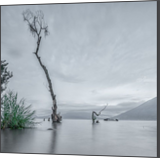 Atitlan lake, Photography, Expressionism, Fine Art, Impressionism, Minimalism, Photorealism, Realism, Romanticism, Composition, Documentary, Environmental art, Land Art, Landscape, Nature, Seascape, Tropical, Wildlife, Window on the World, Photography: Photographic Print, Photography: Premium Print, Photography: Stretched Canvas Print, By Christopher William Adach