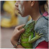 Boy with iguana, Photography, Printmaking, Existentialism, Expressionism, Impressionism, Modernism, Realism, Romanticism, Animals, Botanical, Children, Daily Life, Documentary, Figurative, Multicultural / Ethnic, Nature, People, Portrait, Photography: Photographic Print, Photography: Premium Print, Photography: Stretched Canvas Print, By Christopher William Adach