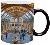 Natural History Museum in London, Photography, Expressionism, Impressionism, Medievalism, Photorealism, Realism, Architecture, Avant-Garde, Composition, Documentary, Historical, Window on the World, Photography: Photographic Print, Photography: Premium Print, Photography: Stretched Canvas Print, By Christopher William Adach