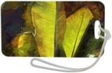 Banana Abstact, Digital Art / Computer Art, Impressionism, Tropical, Photography: Metal Print, By Peter A Hogg