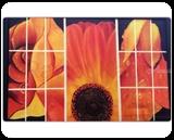 Beautiful nature, Paintings, Fine Art, Nature, Canvas, By Ravjot Kaur