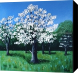 Blooming dogwoods, Paintings, Abstract,Expressionism, Botanical,Landscape,Nature, Acrylic,Canvas, By Pamela D Cauley