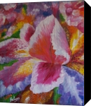 Iris, Paintings, Expressionism,Fine Art,Modernism, Botanical,Floral,Nature, Acrylic,Canvas, By Helen - Bellart
