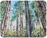 Morning in a pine forest. 1, Paintings, Expressionism, Landscape, Acrylic, By Victor Ovsyannikov