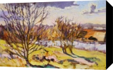 PLEIN AIR 17-03-2017 (FANCY SPRING), Paintings, Expressionism,Impressionism, Landscape, Canvas, By Dima Braga