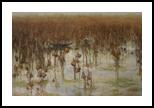 The lotus fades, Paintings, Fine Art,Realism,Romanticism, Decorative,Landscape,Nature, Canvas,Oil, By Ninh NguyenVu