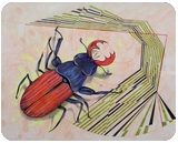 The measurement of space - Stag beetle, Illustration,Paintings, Expressionism,Fine Art, Animals,Conceptual,Decorative, Oil, By federico cortese