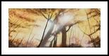 A Blinding Light, Paintings, Impressionism, Landscape, Oil, By Stephen Keller