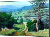 A Pinetree in Paso Robles, Paintings, Impressionism, Landscape, Canvas,Oil, By Mason Mansung Kang