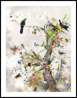 Aerius, Digital Art / Computer Art,Photography, Fine Art,Surrealism, Animals,Botanical,Floral,Landscape,Nature, Digital,Photography: Photographic Print, By Jesper Krijgsman