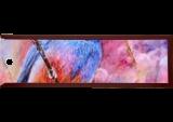 Amaranth garden, Paintings, Fine Art, Animals,Floral,Nature, Acrylic,Canvas, By Marta Kuźniar