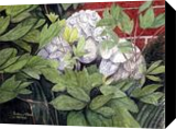 An Angel sleeps in my Garden, Paintings, Realism, Still Life, Painting, By William Clark