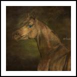 Azouti, Paintings, Fine Art, Animals, Canvas, By Bashir Abduljaber Ali Hajji