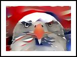 Bald Eagle, Digital Art / Computer Art, Abstract,Pop Art, Animals,Conceptual,Figurative,Inspirational,Nature, Digital, By Monica Amorim Gutmann