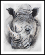 Be The Rhnio, Pastel, Realism, Nature, Pastel, By Dave Oakley