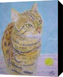 Bengal Cat, Paintings,Pastel, Fine Art,Realism, Animals, Painting,Pastel, By Cybele Barbosa