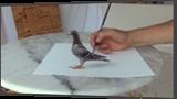 Bird in 3D: amazing!, Drawings / Sketch, Realism, 3-D, Oil, By Stefan Pabst