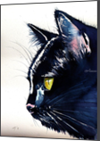 Black cat, Paintings, Impressionism, Animals, Watercolor, By Kovacs Anna Brigitta