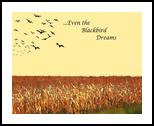 Blackbird Dreams, Digital Art / Computer Art, Expressionism, Animals, Digital, By William Clark