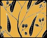 Bloodwood  - Eucalyptus polycarpa, Digital Art / Computer Art,Drawings / Sketch,Illustration, Fine Art, Botanical,Environmental art,Floral,Nature, Digital,Ink,Mixed,Pencil, By William (Bill) Gregory Ivinson