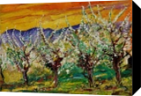 Blossoming cherry trees, Paintings, Expressionism, Landscape, Canvas, By Pol Ledent