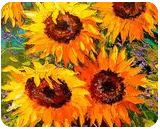 Bouquet of sunflowers in nature, Paintings, Impressionism, Floral, Canvas,Oil,Painting, By Olha   Vyacheslavovna Darchuk