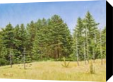Breathe in the Air, Paintings, Fine Art,Photorealism,Realism, Landscape,Nature, Oil,Painting,Wood, By Dejan Trajkovic