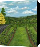 Between the Vines, Paintings, Fine Art, Landscape,Nature, Acrylic,Canvas, By Kelsey Elizabeth VandenHoek