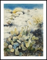 Cacti, Paintings, Fine Art, Landscape, Watercolor, By E Gordon West