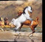 CFM12147, Digital Art / Computer Art, Expressionism, Animals, Digital, By Celito Medeiros