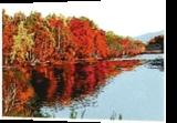 Confluence Autumn, Printmaking, Expressionism, Landscape, Ink, By Thomas J Norulak