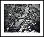 Cook forest Steps, Printmaking, Expressionism, Landscape, Ink, By Thomas J Norulak
