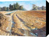 Country Field in Winter, Namwon, Paintings, Impressionism, Landscape, Canvas,Oil, By Mason Mansung Kang