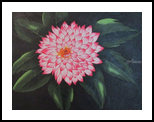 Dahlia, Paintings, Abstract, Floral, Acrylic, By melanie ann lutes