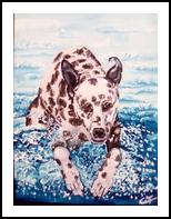Dalmata Tuffatore, Paintings, Fine Art, Animals, Acrylic,Canvas, By Corinne Marie Claude Tomas