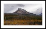Divide Mountain on a Stormy Autumn Day, Photography, Fine Art,Photorealism,Realism, Botanical,Environmental art,Landscape,Nature,Window on the World, Photography: Metal Print,Photography: Photographic Print,Photography: Premium Print,Photography: Stretched Canvas Print, By Tracey Eileen Vivar