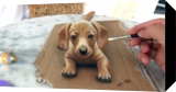Dog in 3D: Amazing, Drawings / Sketch, Realism, 3-D, Oil, By Stefan Pabst